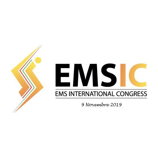 emsic Logo